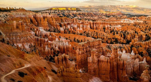 Photograph - Bryce Canyon Sunset by TL  Mair