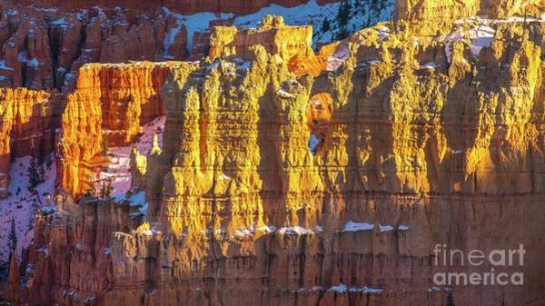 Wall Art - Photograph - Bryce Canyon Utah Columns Layers by Mike Reid