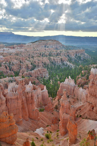 Photograph - Bryce Morning by Ray Mathis