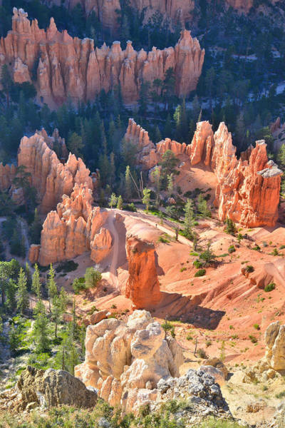 Photograph - Bryce Point Overlook by Ray Mathis