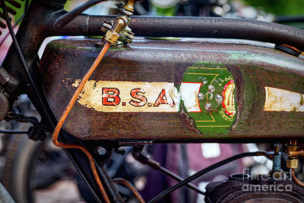 Photograph - BSA by Tim Gainey