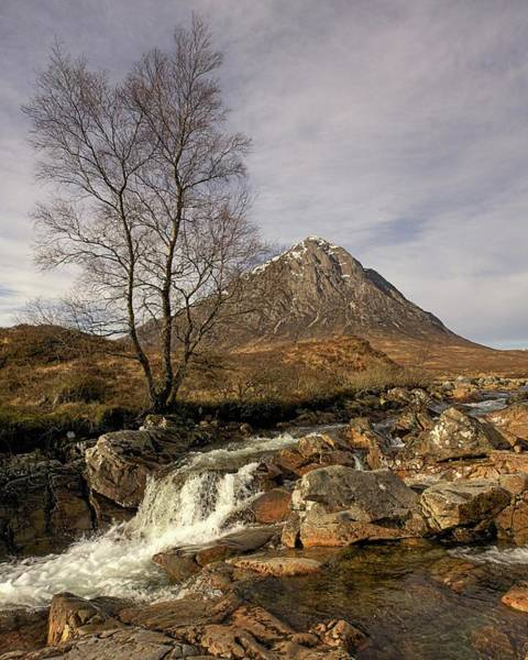 Photograph - Buachaille Etive Mor by Colette Panaioti