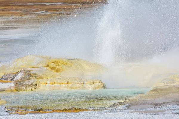 Photograph - Bubbling Earth by Colleen Coccia