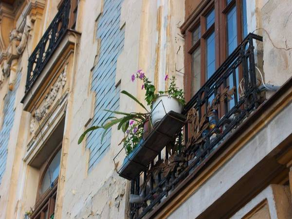 Photograph - Bucharest 1 by Carole Hutchison