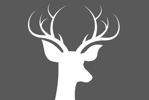 Deer Digital Art - Buck Deer by Chastity Hoff