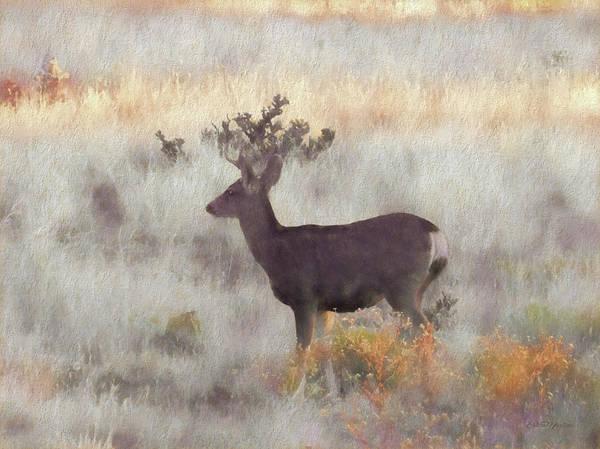 Painting - Buck In Arizona - Painting by Ericamaxine Price