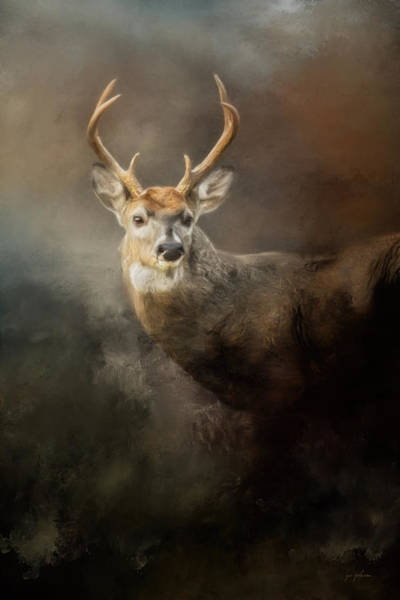 Painting - Buck In The Moonlight by Jai Johnson
