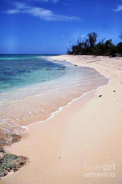 Photograph - Buck Island Beach by Thomas R Fletcher