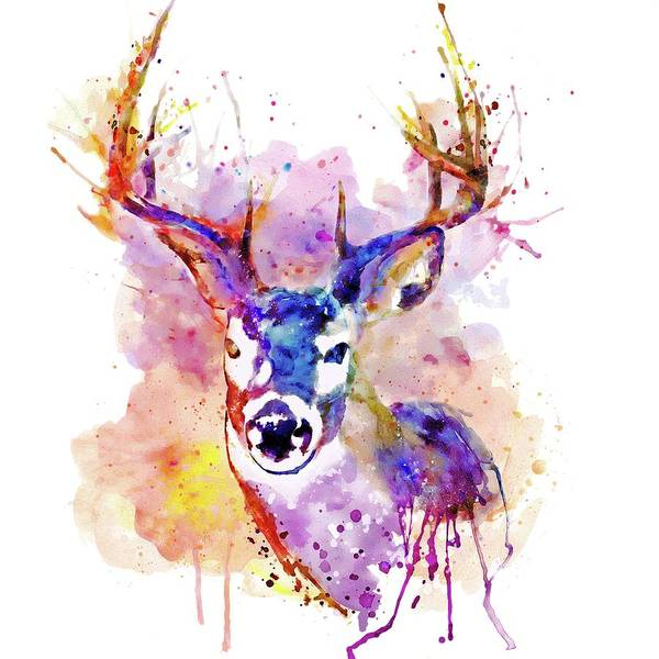 Antlers Painting - Buck by Marian Voicu