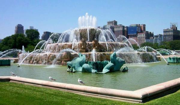Photograph - Buckingham Fountain by Anita Burgermeister