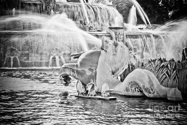 Water Fountain Photograph - Buckingham Fountain Chicago by Paul Velgos