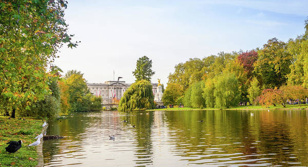 Photograph - Buckingham Palace, London by Alexandre Rotenberg