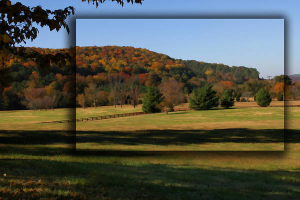 Photograph - Bucks Mountain In Autumn by Patricia Montgomery