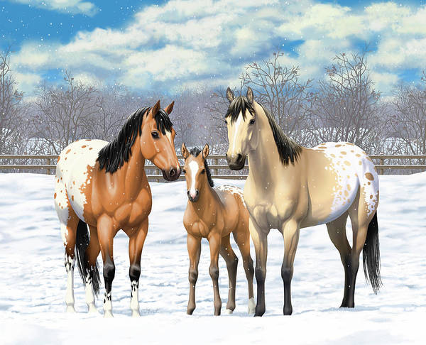 Wall Art - Painting - Buckskin Appaloosa Horses In Winter Pasture by Crista Forest