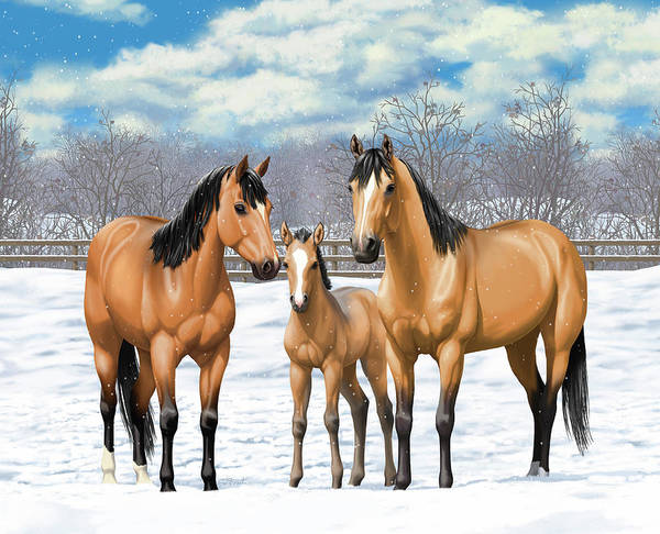 Wall Art - Painting - Buckskin Horses In Winter Pasture by Crista Forest