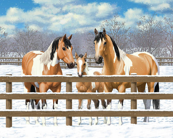 Wall Art - Painting - Buckskin Paint Horses In Snow by Crista Forest