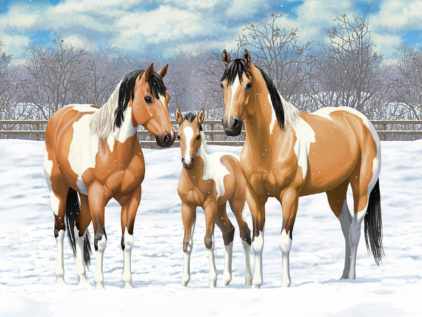 Wall Art - Painting - Buckskin Paint Horses In Winter Pasture by Crista Forest