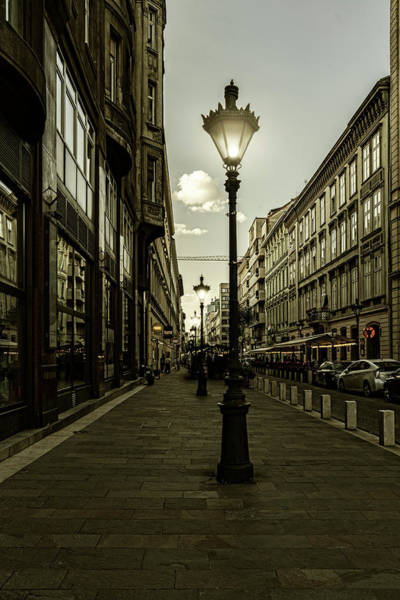 Photograph - Budapest Night Lights by Sharon Popek