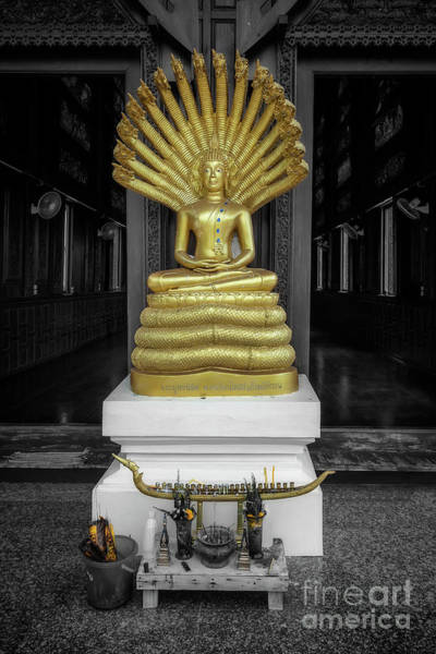 Photograph - Buddha And Naga by Adrian Evans