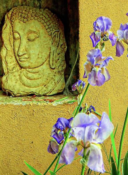 Photograph - Buddha And The Iris by Dorothy Berry-Lound