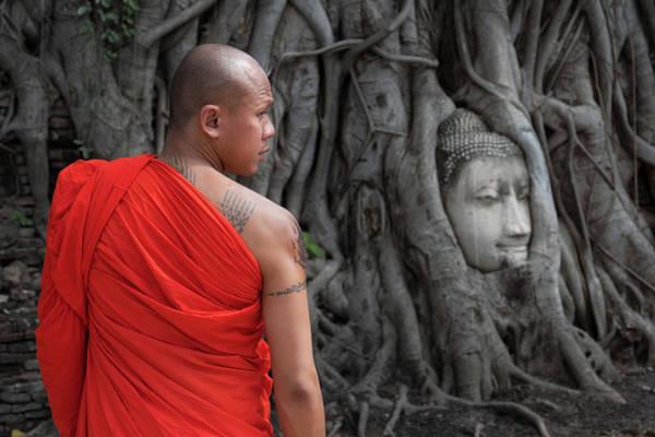Photograph - Buddha Heads by Matt Shiffler
