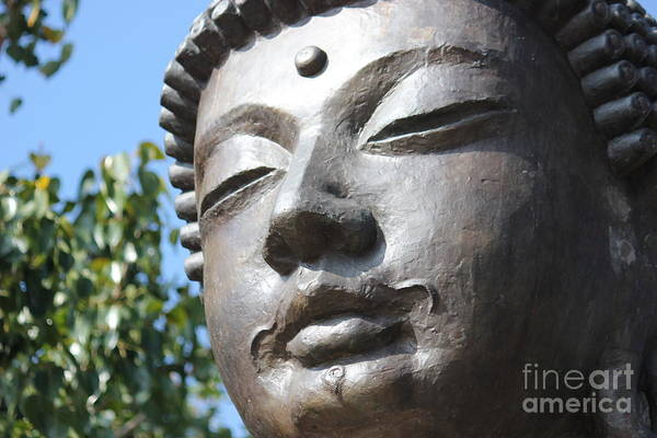 Photograph - Buddha by Wilko Van de Kamp