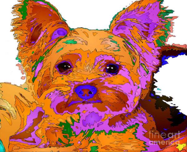 Digital Art - Buddy The Baby. Pet Series by Rafael Salazar