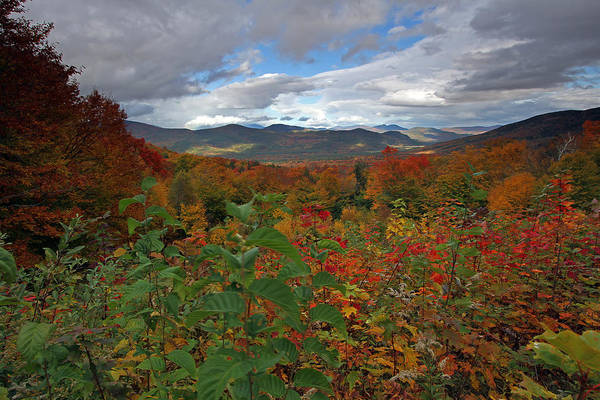 Photograph - Buena Vista New Hampshire by Juergen Roth