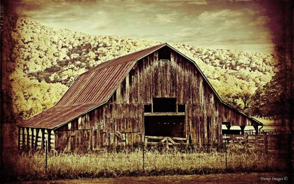 Photograph - Buffalo River Valley Barn by Wesley Nesbitt