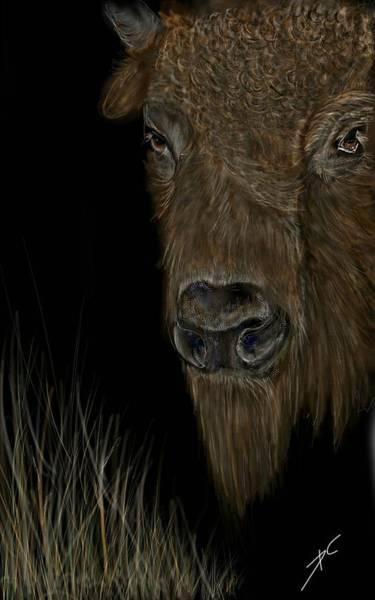 Digital Art - Buffalo Roam by Darren Cannell