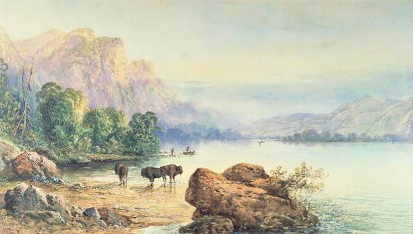Mountain Lake Painting - Buffalo Watering by Thomas Moran