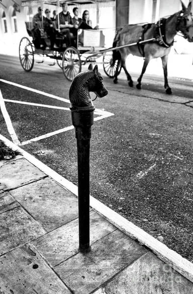 Photograph - Buggy Ride Through The French Quarter New Orleans by John Rizzuto
