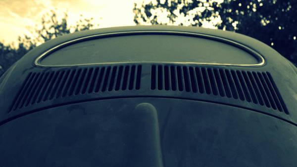 Wall Art - Photograph - Bug's Eye View by Joseph Skompski