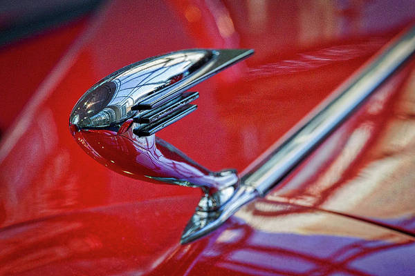 Photograph - Buick Lasalle Hood Ornament by Stuart Litoff