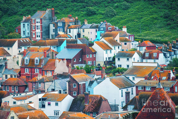 Photograph - buildings in Hastings, East Sussex, England by Ariadna De Raadt