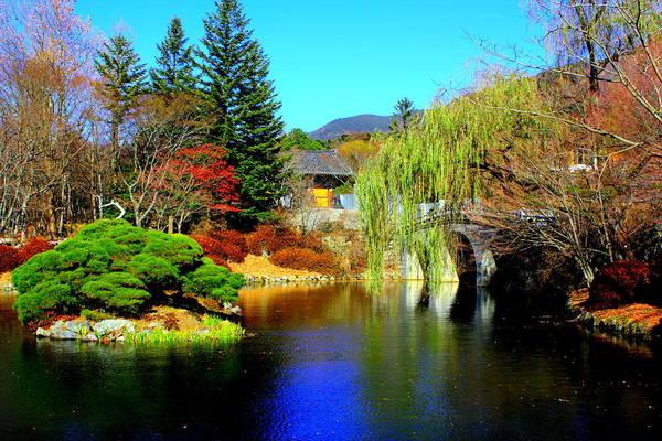 Become One Wall Art - Photograph - Bulguksa Pond Bulguksa Temple by Ronnie