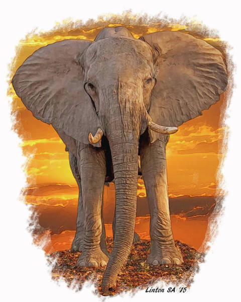 Digital Art - African Bull Elephant by Larry Linton