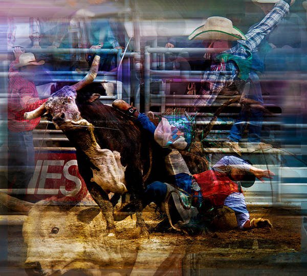 Roping Painting - Bull Rider by Mark Courage