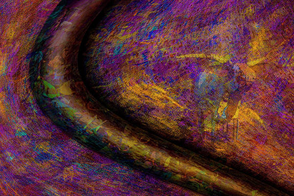 Photograph - Bull Rust by Paul Wear