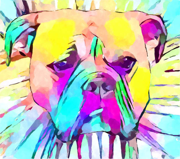 Wall Art - Painting - Bulldog 2 by Chris Butler