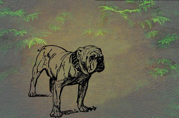 Mixed Media - Bulldog by Movie Poster Prints