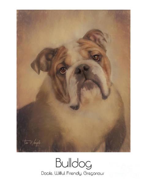 Digital Art - Bulldog Poster by Tim Wemple