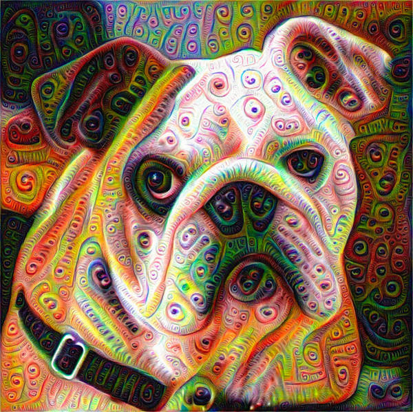 Digital Art - Bulldog Surreal Deep Dream Image by Matthias Hauser
