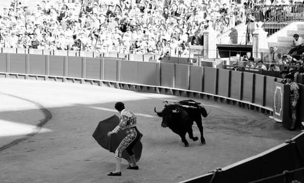 Photograph - Bullfighting 13b by Andrew Fare