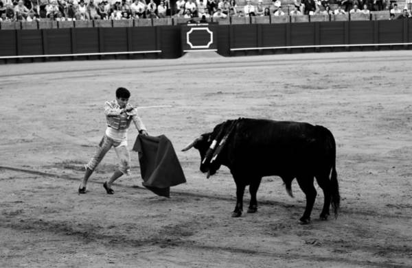 Photograph - Bullfighting 22b by Andrew Fare