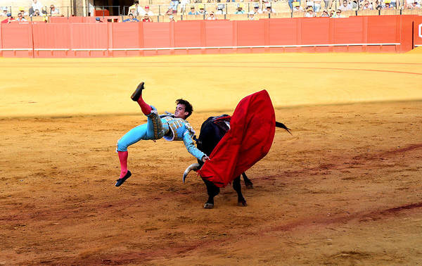 Photograph - Bullfighting 25 by Andrew Fare