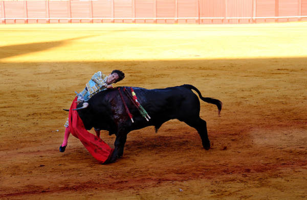 Photograph - Bullfighting 26 by Andrew Fare