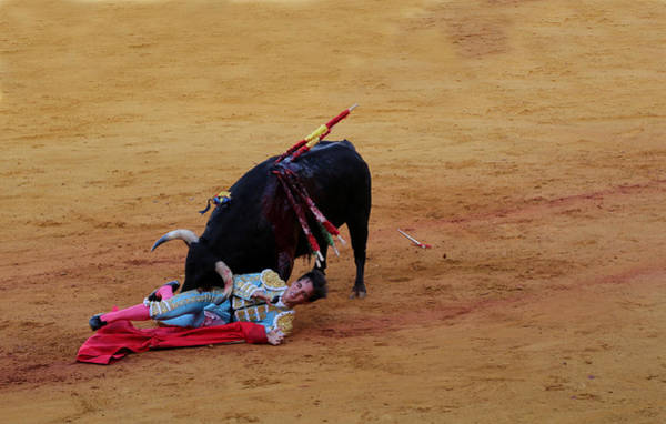 Photograph - Bullfighting 29 by Andrew Fare