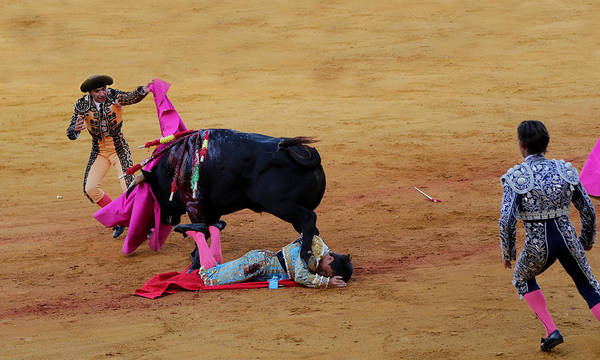 Photograph - Bullfighting 30 by Andrew Fare
