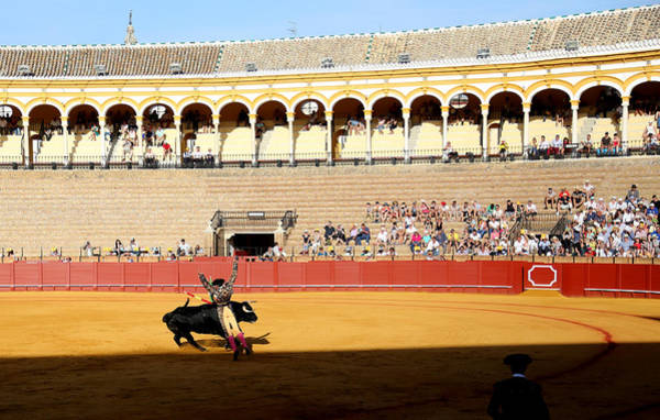 Photograph - Bullfighting 33 by Andrew Fare